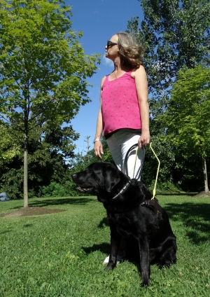 A woman and a black Lab/Golden Retriever in a harness.