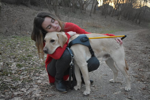 Danika Blackstock crouches down on the ground and hugs Ulysses, a golden-lab retriever mix.