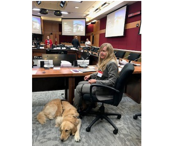 Diane Bergeron, Vice President, Engagement and International Affairs, CNIB Foundation and her guide dog, Lucy, appear before the Senate Standing Committee on Social Affairs, Science and Technology to provide CNIB's recommendations on Bill C-81.