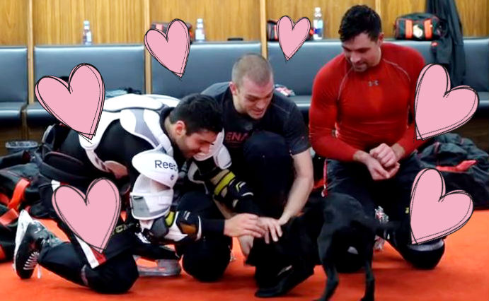 Ottawa Senators players play with puppy in locker room