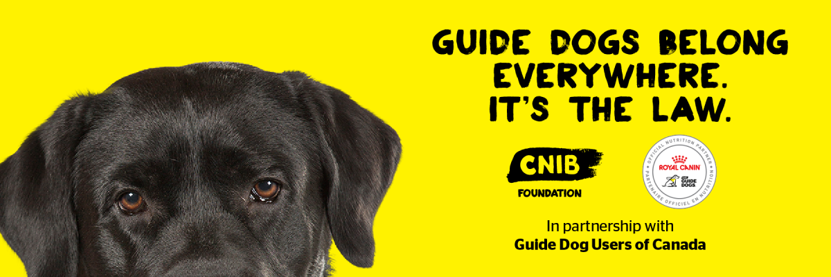 "The top half of a Black Labrador's head and the words ""Guide dogs belong everywhere. It's the law"" and CNIB Foundation logo, In partnership with Guide Dog Users of Canada"