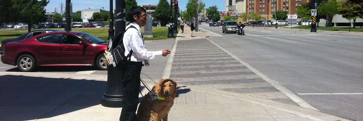 A man stands at an intersection with his guide dog.